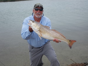 guide-bruce-pershing-red-fish