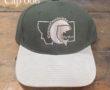 CCFS Ballcap -Olive/Khaki