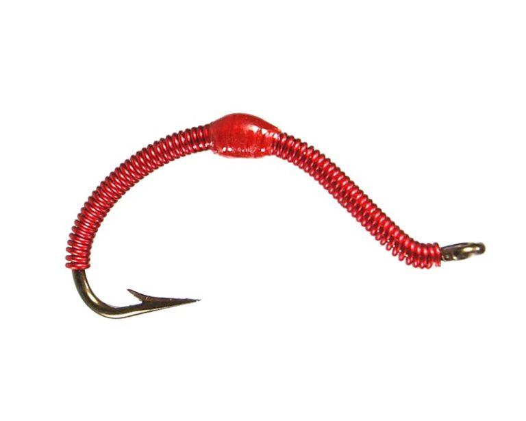Wire Worm