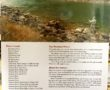 Fly Fishing Montana A No Nonsence Guide to Top Waters back cover